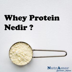 Whey Protein Nedir ?