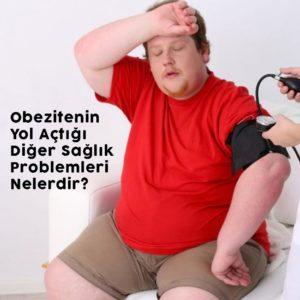 Obezite ve Yol Açtığı Hastalıklar