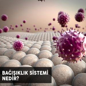 Bağışıklık Sistemi Nedir ? Nasıl Çalışır ?